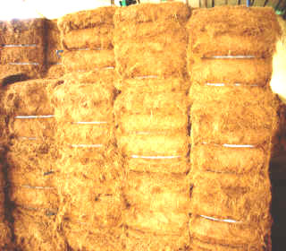 Africa coir products