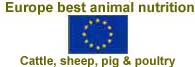 Europe best animal nutrition products