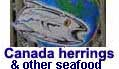 Canada smoked herring, salted herring and alewife exporter
