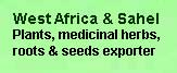 West Africa plants and medicinal herbs