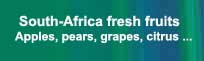 South-Africa apples, pears, grapes, citrus and other fresh fruits